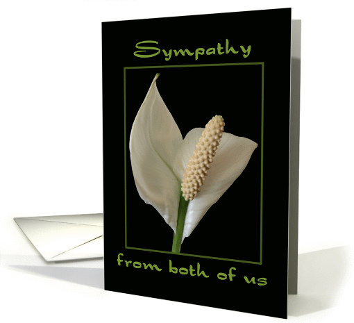 Sympathy from Both of Us - Peace Flower card (1117250)