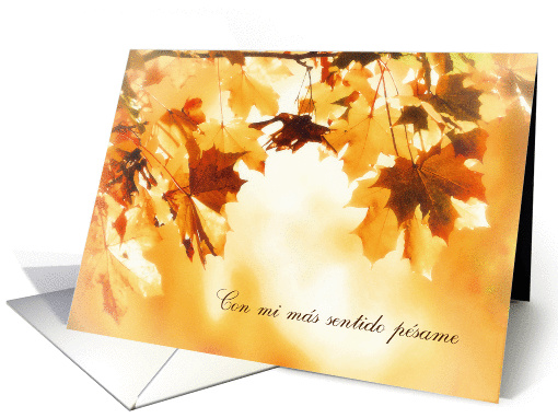With deepest Sympathy in Spanish, Autumn leaves card (1287034)
