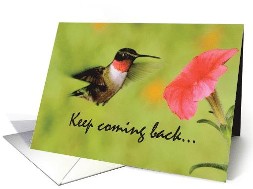 12 Step Recovery Support, Encouragement with Hummingbird... (185699)