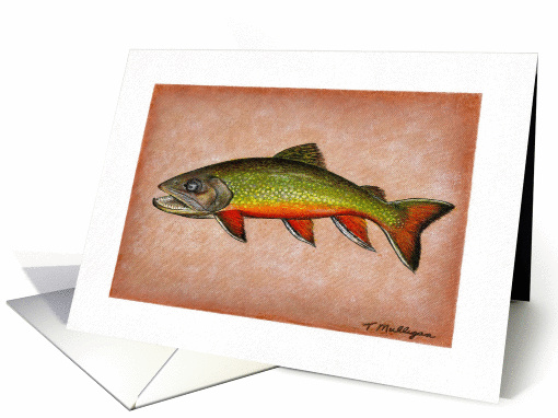 Fishing - Brook Trout card (187310)