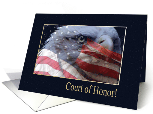 Court of Honor, Eagle Close up with American Flag, Eagle... (915708)