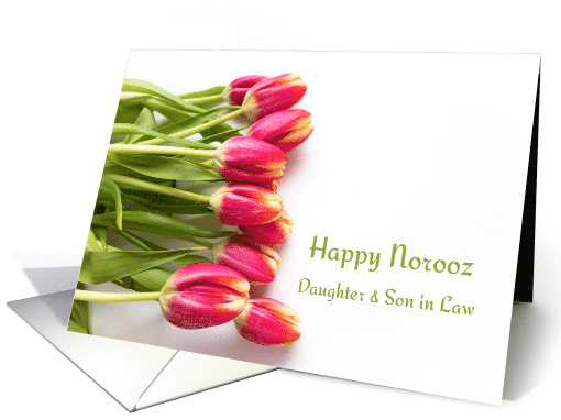 Daughter & Son in Law Happy Norooz Pink Tulips card (1514834)