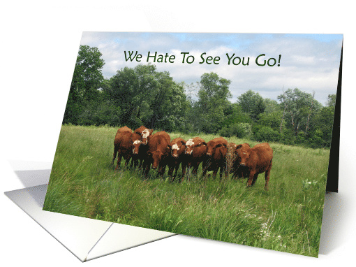 Goodbye from Group with Cows card (178543)