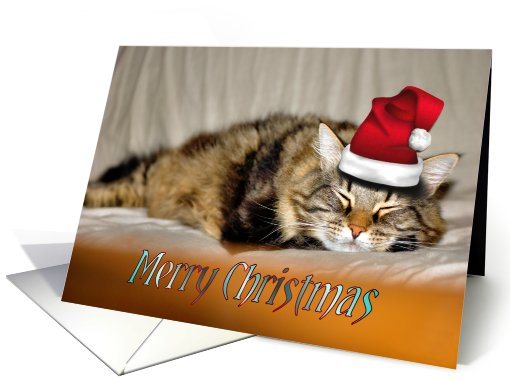 RELAXING CHRISTMAS card (226553)