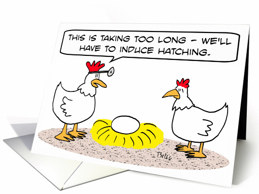Chicken doctor induces hatching of egg. card (834445)