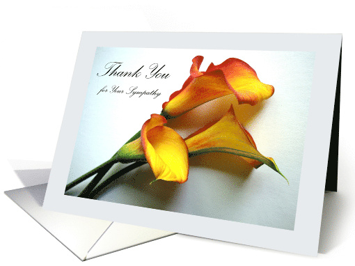 Thank You for Sympathy, Calla Lily Flowers card (823992)