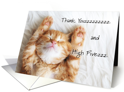Cute Thank You for Pet Foster Mom, Sleeping Cat card (1551096)