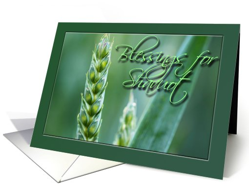 Blessings For Shavuot Wheat card (632232)
