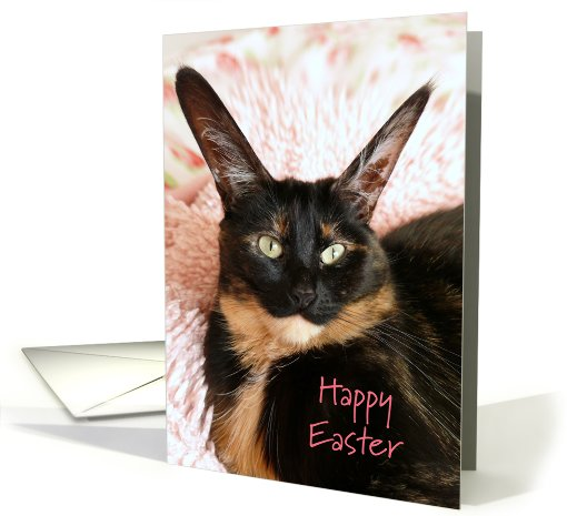Big Eared Cat Happy Easter card (492729)