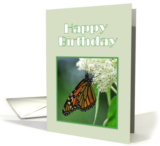 Happy Birthday Monarch Butterfly on White Milkweed Flower card