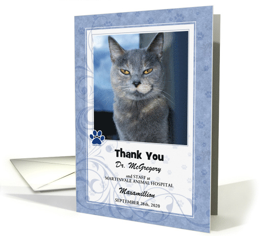 Veterinarian Thank You Soft Blue with Pet's Photo Blank card (1048215)