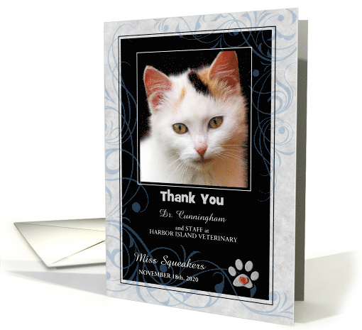 Veterinarian Thank You Blue Gray and Black with Pet's Photo Blank card