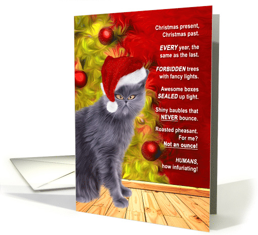 Funny From the Cat Christmas Grumbles and Silly Poem card (1492570)