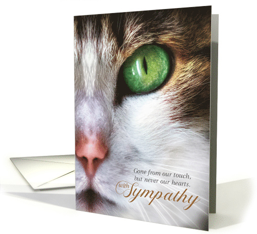 Pet Sympathy Loss of a Cat Red Lynx Siamese Painting card (509865)