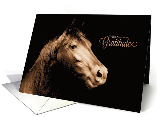 Thank You Western Sepia Toned Horse Blank card (763821)
