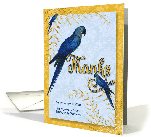 Veterinarian Thank You - Hyacinth Macaw Parrot card (892898)