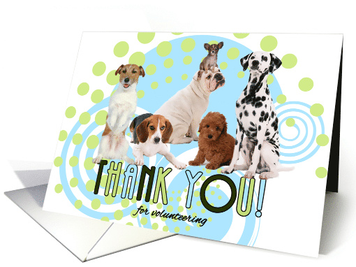 Volunteer Thank You Cute Pack of Dogs with Modern Green and Blue card