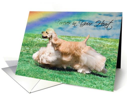 Pet Loss Sympathy Card - Forever In Your Heart card (962663)