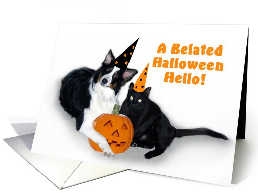 Halloween Dog and Cat Belated card (481100)