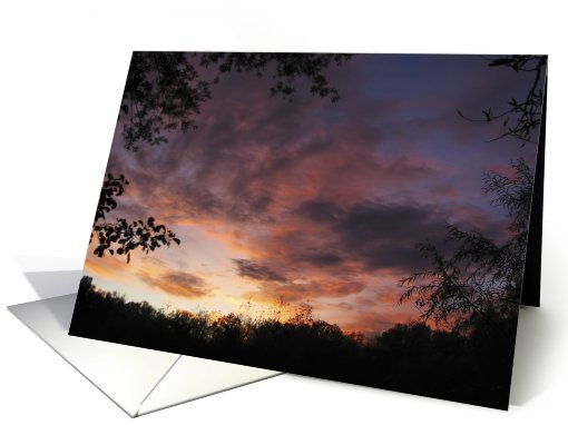 sunset clouds framed between trees card (497762)