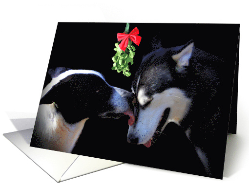 Happy Holidays dogs and Mistletoe card (1411994)