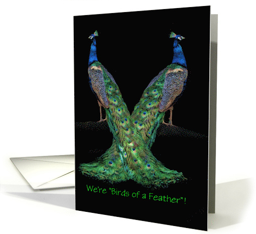Happy National Siblings Day Two Peacocks Customizeable card (1429400)