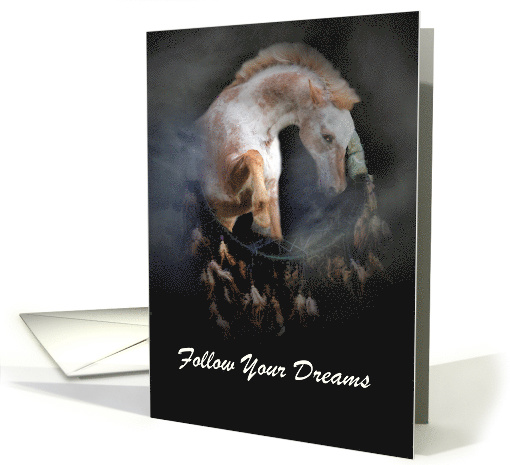 Follow Your Dreams Native American Dream Catcher and... (1430236)