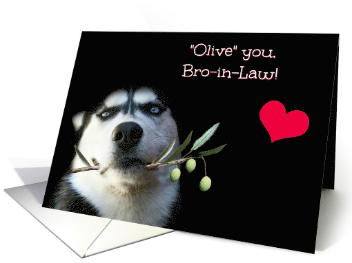 Humorous Happy Father's Day to Brother In Law With Husky Dog card