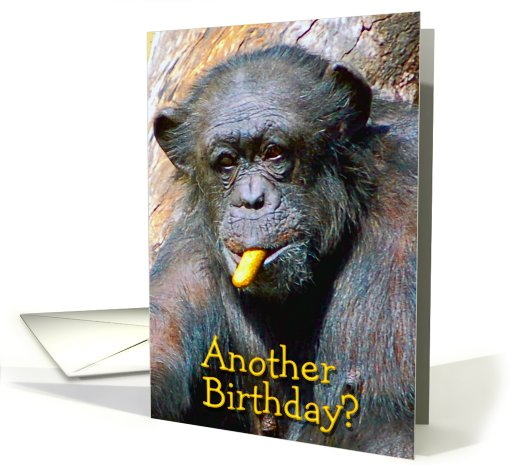 Another Birthday Funny Chimpanzee card (494570)