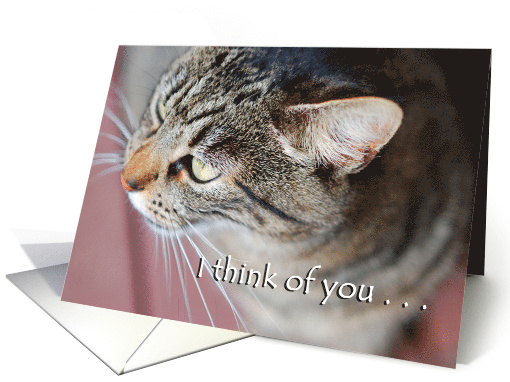 Thinking of You card (495458)