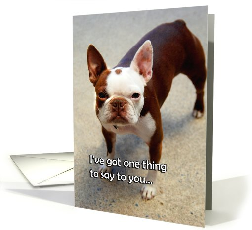 Get Well Pup card (534183)