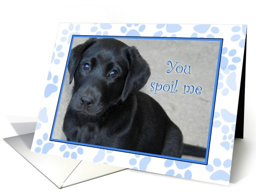 You Spoil Me - Thank You - That's so cool card (742549)
