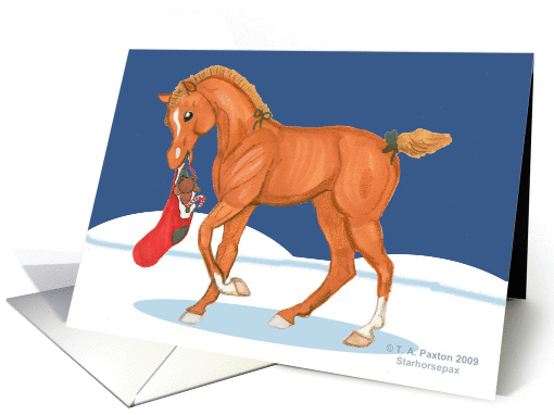 Horse Colt with Christmas Stocking Greetings card (499200)