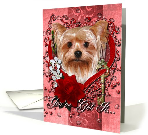 Valentine's Day - Key to My Heart - Yorkshire Terrier card (734778)