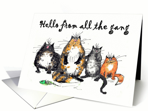 Hello from all the gang, four crazy cats.humor, funny. card (1322176)