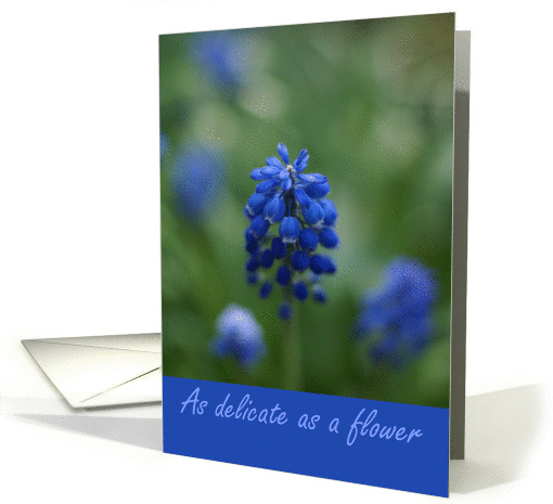 Happy Birthday Palindrome 11-11 Delicate Flower card (832352)
