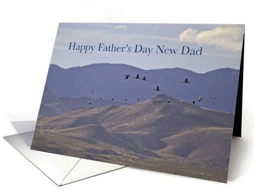 Happy Father's Day New Dad card (816189)