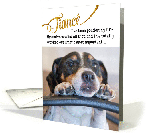 Fiance Funny Birthday Card - Dog Pondering Life and The Universe card