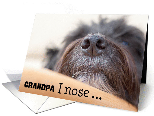 Grandpa Humorous Birthday Card - The Dog Nose card (941354)