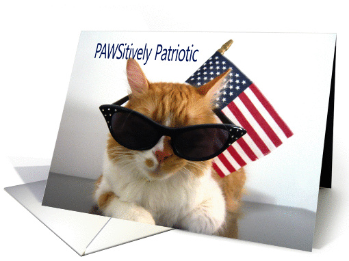 Presidents' Day - PAWSitively Patriotic Cat card (902943)