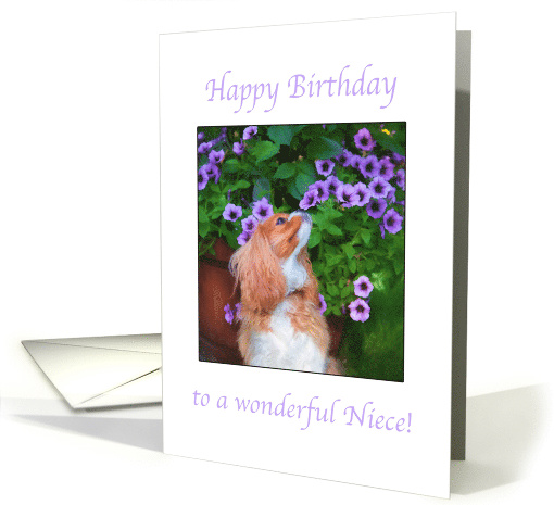 Happy Birthday to a wonderful Niece Cavalier King Charles Spaniel card