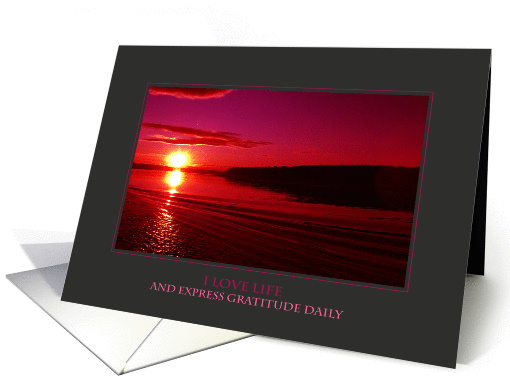 I Love Life and Express Gratitude Daily (Encouragement) card (915069)