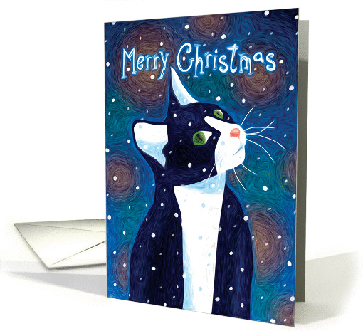 Black & White Cat Watching Snow Fall, Merry Christmas card (1405444)