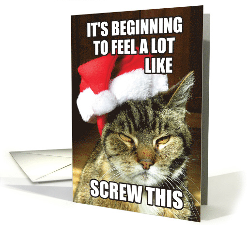 Screw This Humorous Christmas Greeting Card Featuring a Mad Cat card