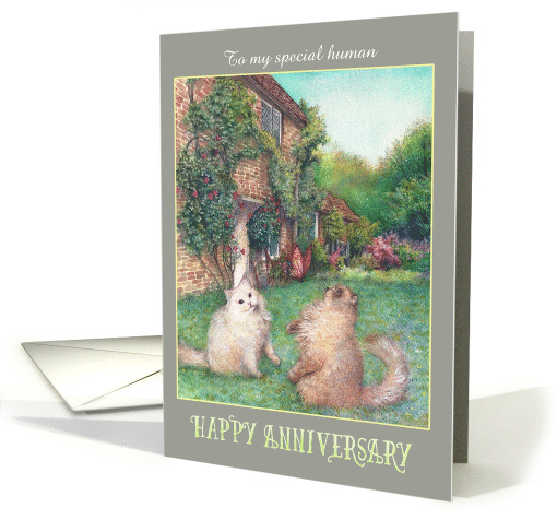 Happy Anniversary from Cats in garden card (1480396)