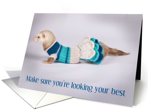 National Ferret Day April 2nd, ferret in a dress. card (1520218)