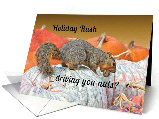 Holiday Rush Squirrel Encouragement card (1151368)