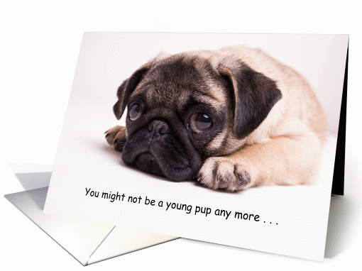Getting Older Funny Birthday Card featuring a cute puppy card