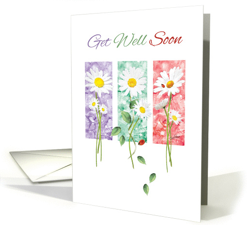 Get Well Soon - 3 Long Stem Daisies on Color Panels card (1375450)