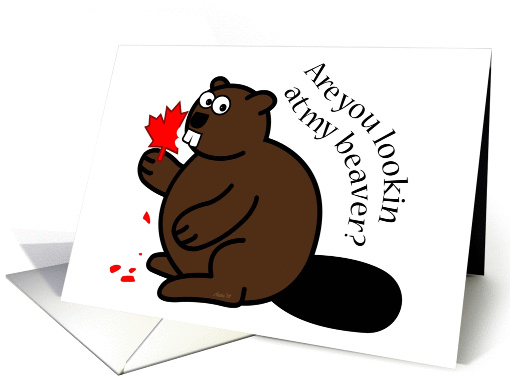 Are You Lookin? beaver, maple leaf, Canada Day, funny card (1279324)